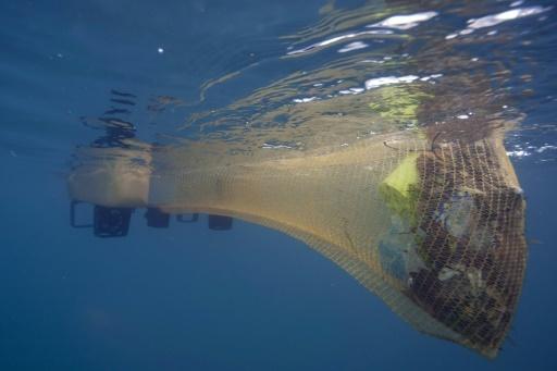 """Le """"Jellyfishbot"""", un """"robot-méduse"""" conçu pour nettoyer les eaux des ports, ici à Cassis dans les Bouches-du-Rhône, le 18 janvier 2018 © BORIS HORVAT AFP"""