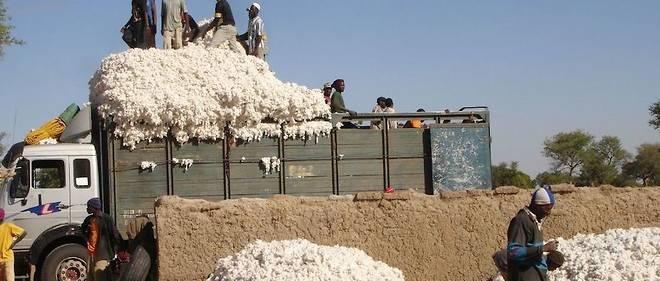 Des travailleurs dans une production de coton, sur la route de Djenné, au Mali.