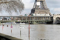 La Seine va monter jusque dans la nuit.  ©Michel Stoupak