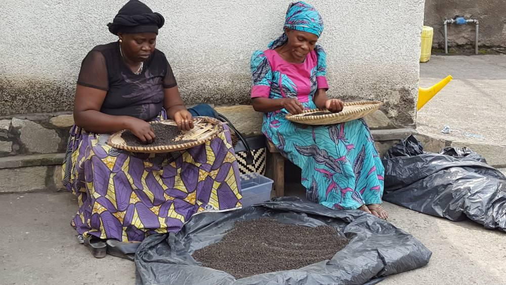 Des femmes vannant et triant le poivre d'ufamandu à Goma.  ©  DR