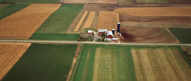 La Chine cherche à acquérir des champs de céréales dans le monde, comme ici dans le Wisconsin aux États-Unis.