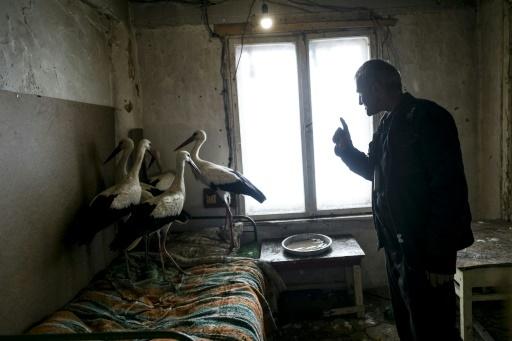 """Safet Halil a recueilli chez lui cinq cigognes frigorifiées dans son village de Zaritza. """"J'ai allumé le poêle et je leur ai acheté du poisson"""". Le 21 mars 2018. © Dimitar DILKOFF AFP"""