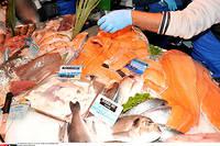 Il est recommandé de manger des poissons gras, des noix ou encore de l'huile de colza.  ©ALLILI MOURAD/SIPA