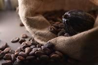 Fèves de cacao.  ©CHRISTOPHE ARCHAMBAULT