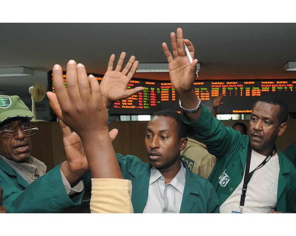 Des traders de l'Ethiopian Commodity Exchange à l'oeuvre.  ©  SIMON MAINA / UNDP / AFP
