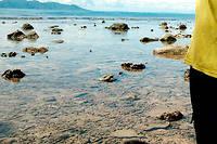 Les Chinois sont en négociations avancées avec le gouvernement de Guadalcanal pour construire un port. Illustration.