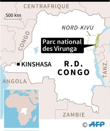 RDC : Parc national des Virunga © Paul DEFOSSEUX AFP
