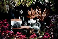 En diffuseur ou en bougie, la première gamme de parfums d'intérieur d'Alessi, The Five Seasons.