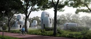 Les cinq maisons se situeront dans la banlieue d'Eindhoven, dans le sud des Pays-Bas.  ©Houben