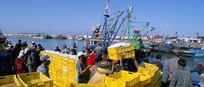 Parmi les secteurs qui peuvent participer de manière signifiante à l'accroissement du commerce intra-africain, il y a celui de la pêche. Ici, le débarquement de prise de sardine à Essaouira, au Maroc.