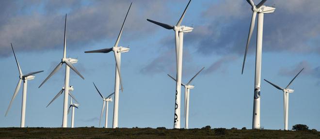 Un champ d'éoliennes à Villeveyrac dans l'Hérault.