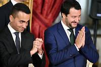 Le ministre de l'Intérieur italien Matteo Salvini, issu du parti d'extrême droite la Ligue, et Luigi Di Maio, du Mouvement 5 étoiles, sont les deux piliers du gouvernement de coalition au pouvoir à Rome. Ils ne réclament pas (ou plus) de sortir de la zone euro. Mais l'un et l'autre entretiennent une rhétorique très agressive vis-à-vis des règles européennes qui les empêcheraient, selon eux, de respecter la volonté du peuple italien.