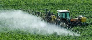 Des pesticides sont pulvérisés sur un champ (Photo d'illustration).