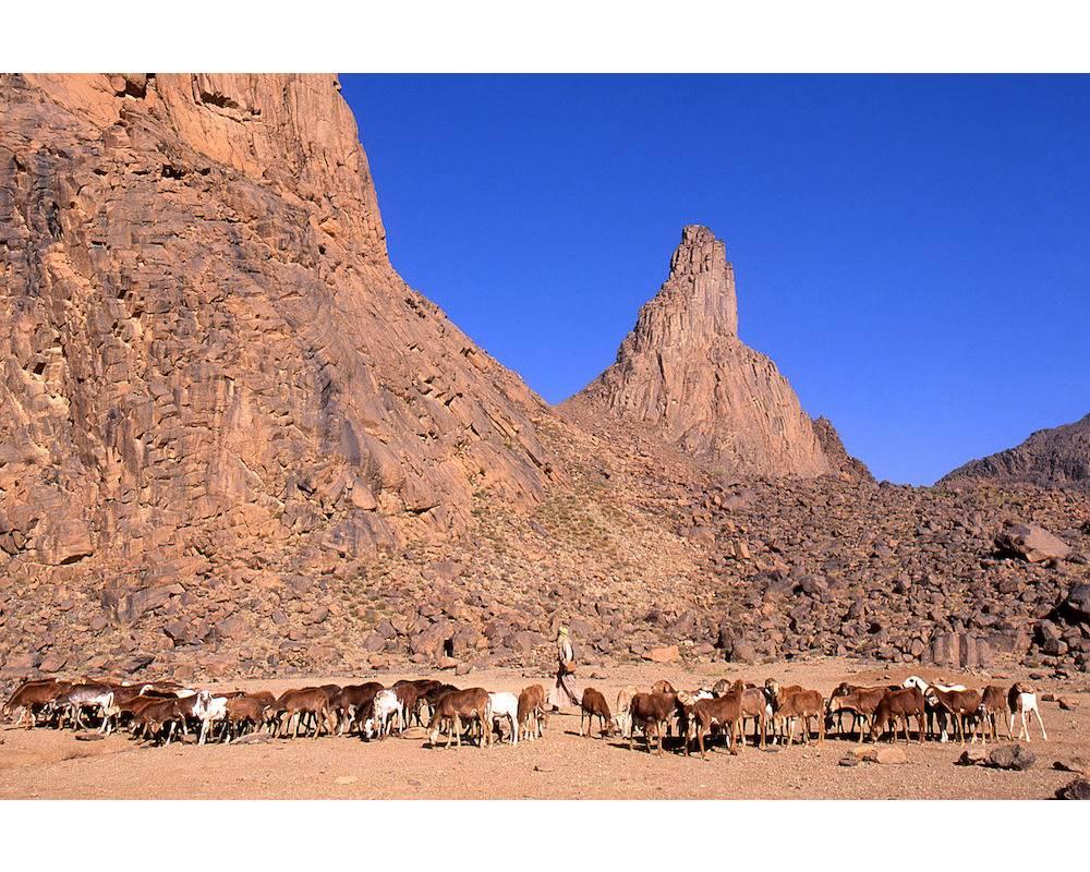 Près des monts Assekrem. ©  Biosphoto / Antoine Lorgnier