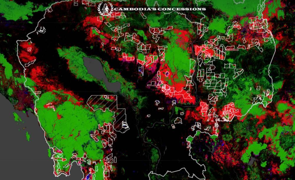 Déforestation ©  Capture d'écran Licadho