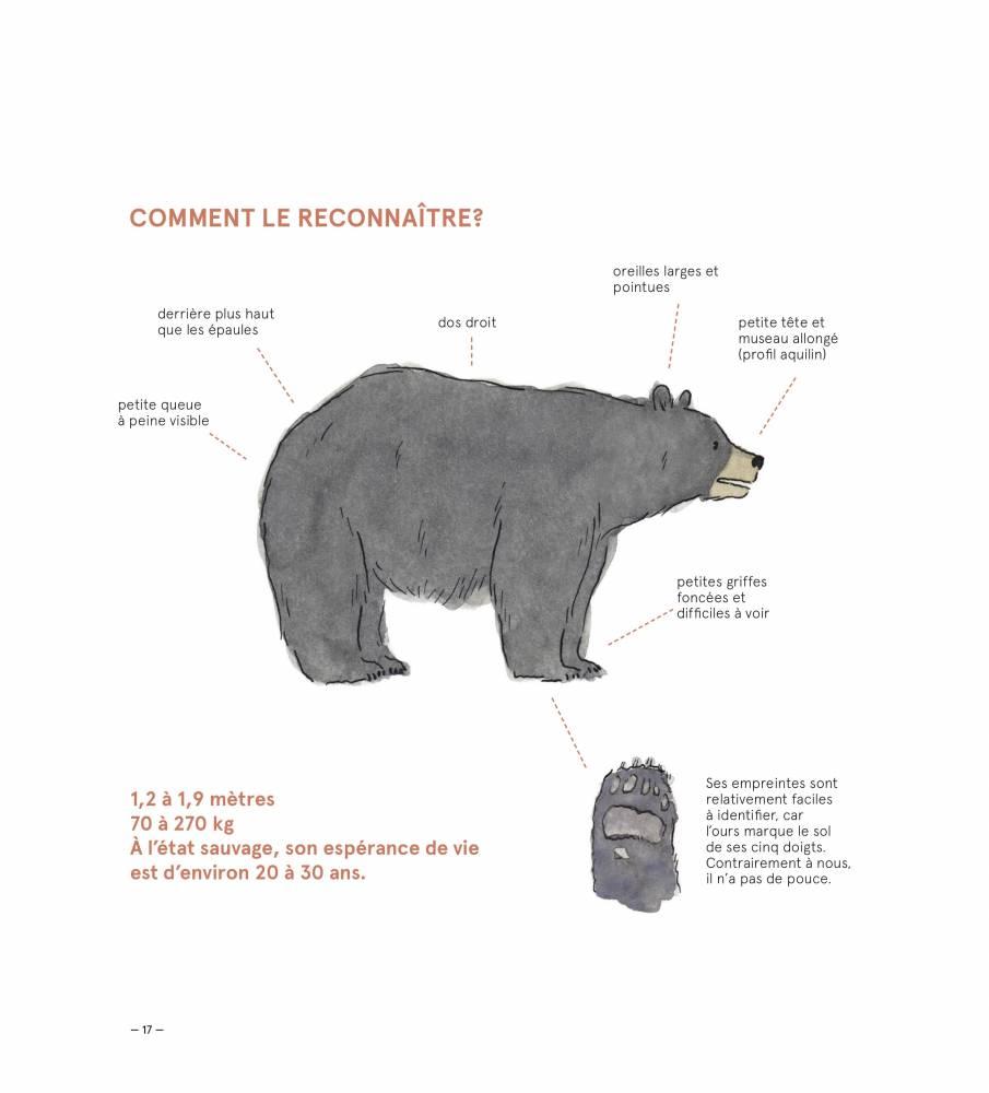 Ours brun blanc noir, de Pascal Girard, aux éditions La Pastèque ©  La Pastèque