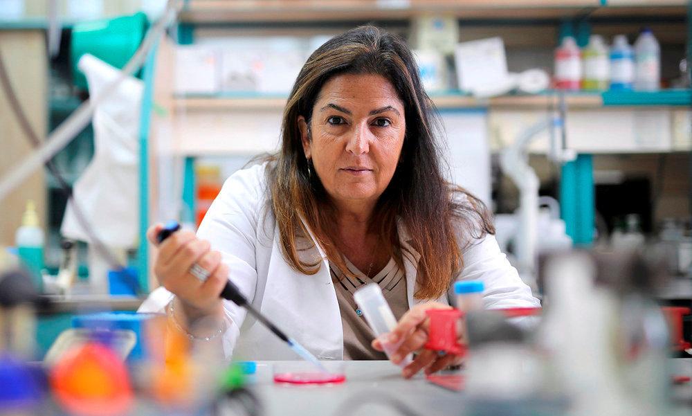Véhicules. Doyenne de la faculté de biotechnologie et de génie alimentaire du Technion, à Haïfa (Israël), le Pr Machluf utilise des cellules souches pour transporter le traitement anticancéreux.