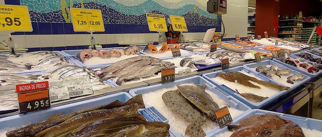 Beaucoup plus de poissons en ligne datant
