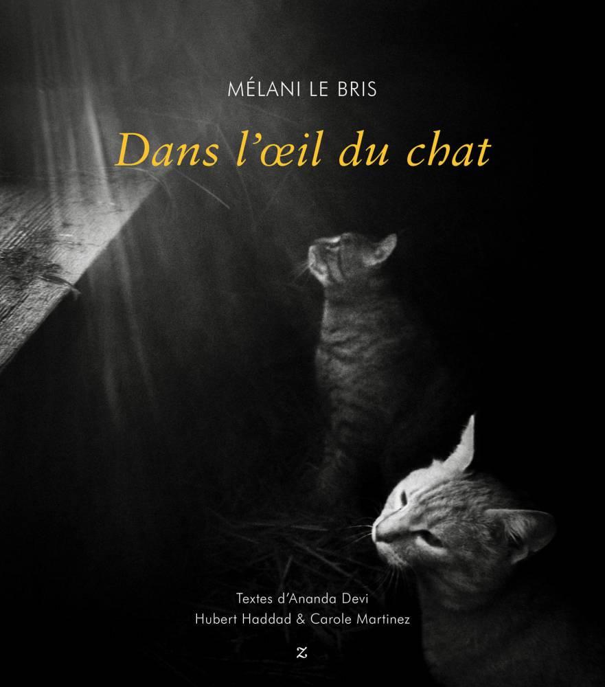 couv_dans_lœil_du_chat.indd