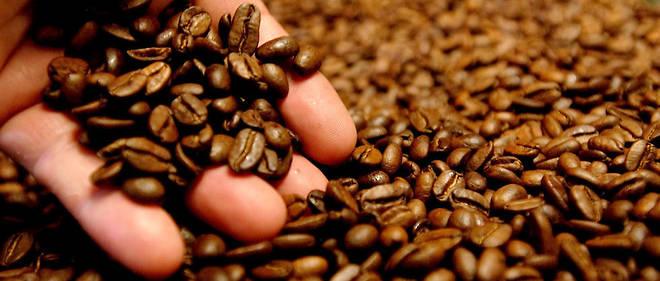 Runge a identifié la substance excitante contenue dans le café :latriméthylxanthine, ou caféine. Image d'illustration.