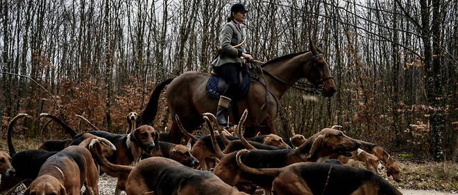 Treize personnes sont décédées dans des accidents de chasse lors de la dernière saison.