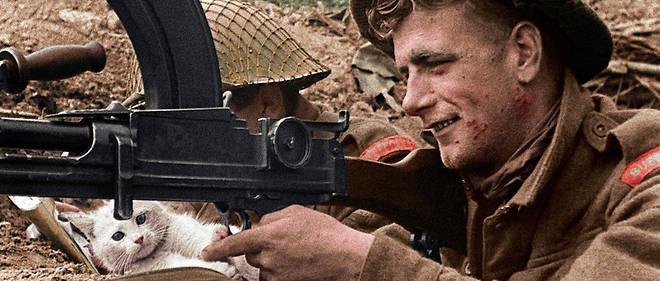 """Résultat de recherche d'images pour """"les animaux pendant la seconde guerre mondiale"""""""