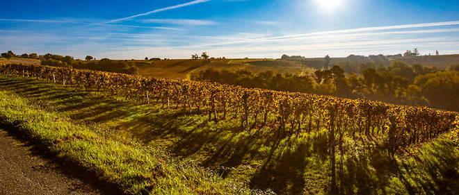 Située en amont de Bordeaux sur la rive droite de la Garonne,  l'appellatiuon cadillac s'étend sur le plateau et les coteaux qui  dominent le fleuve, sans doute une des plus belles régions du bordelais.