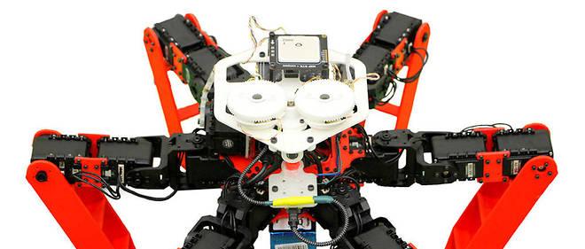 Les sciences sens dessus dessous: AntBot, un GPS de fourmi