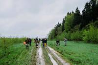 Une équipe d'archéologues parvient sur le site de la bataille de Valoutina Gora, en août 1812.