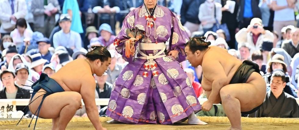 rencontre un lutteur de sumo