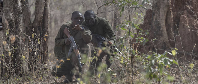La question de la sécurité n'est plus seulement politique. Elle est aussi économique autour du tourisme. Ici des rangers à l'entraînement dans le parc de la Pendjari, au Bénin.