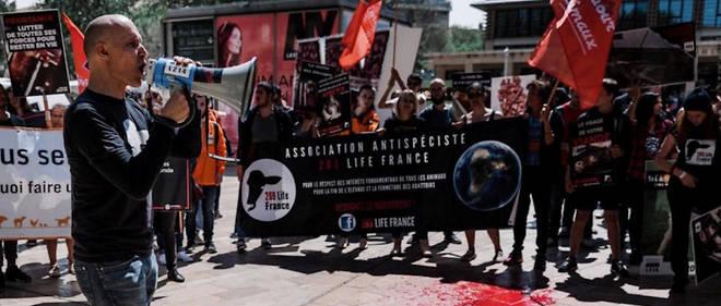 Manifestation antispéciste en mai 2019.