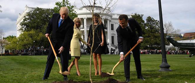 Le président français avait offert le jeune chêne à son homologue américain à l'occasion de sa visite d'État à Washington en avril 2018.