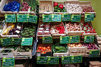 Plusieurs études récentes concluent que les consommateurs de produits bio sont en meilleure santé que ceux qui n'en consomment pas et qu'ils sont moins atteints par certains cancers.