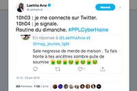 Un tweet parmi d'autres. « Ces messages, c'est mon lot quotidien », déplore la députée Laetitia Avia.