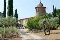 Pour les 10 ans du festival, le domaine de l'Olivette au Castellet  organise deux concerts au cœur du vignoble. L'occasion de se désaltérer  en swinguant!