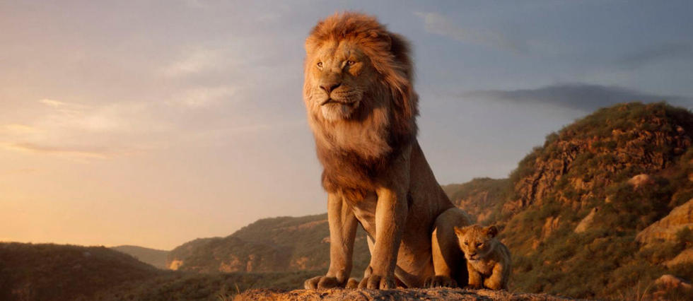Tout Est Bon Dans Le Roi Lion Le Point