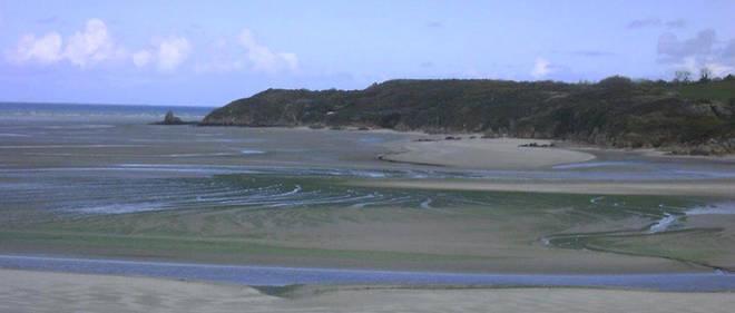 Les marées vertes souillent les côtes bretonnes depuis près de 50 ans. En se décomposant, les algues dégagent un gaz toxique... ce qui conduit désormais les autorités à en interdire l'accès.