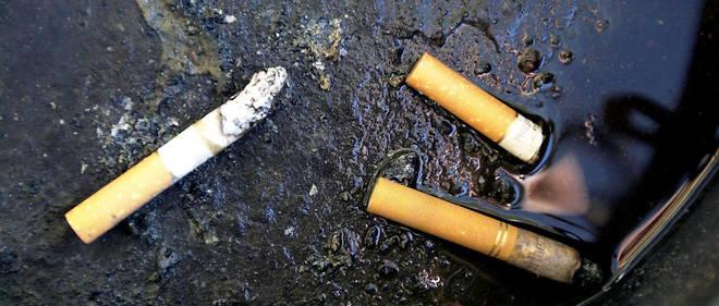 Les champignons pourraient être utilisés pour recycler les mégots de cigarettes. Photo d'illustration.