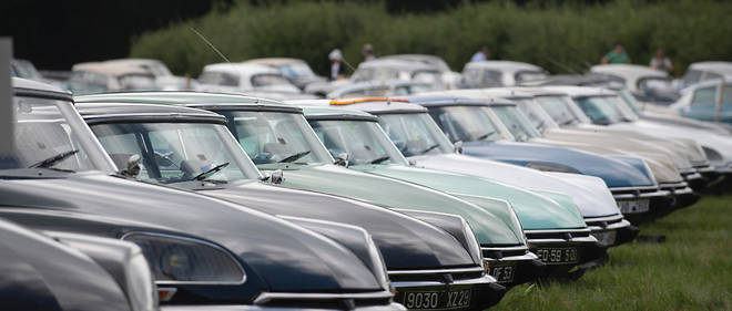 Des DS comme s'il en pleuvait ! Venues d'Italie, de Hollande, de Californie, de Nouvelle-Zélande ou la passion sans frontières des Citroën.