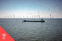 Generalement, la numerisation facilite l'adoption des energies renouvelables en ameliorant l'efficacite de l'approvisionnement et la gestion des fluctuations de la demande. Par exemple, grace aux donnees qu'envoient en temps reel les compteurs numeriques, les clients reduisent leur consommation aux heures de pointe, limitant leurs depenses mais evitant aussi les pics de consommation. En outre, la numerisation peut egalement favoriser la decentralisation de la production d'electricite en creant de nouveaux modeles commerciaux.