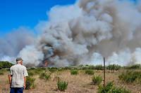 L'incendie a ravagé plus de 130 hectares ce vendredi près de Générac, dans le Gard.