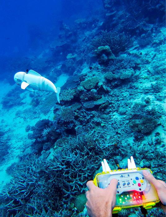 Ecocompatible. Le robot explorateur sous-marin SoFi, piloté à distance, est fait d'un matériau qui amortit les chocs contre les roches etlescoraux.