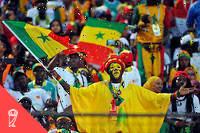 Des supporters sénégalais lors de la Coupe d'Afrique des nations2019.