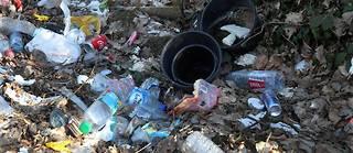 LÎle-de-France est une région particulièrement touchée par les dépôts sauvages de déchets en tout genre.