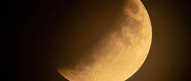 La sonde israélienne Bereshit s'est écrasée en avril 2019 et transportait des tardigrades