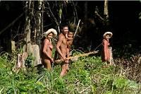 Aujourd'hui, il reste environ 300 Zo'é vivant dans une quinzaine de villages.