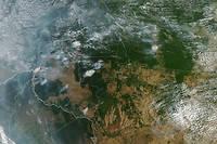 Au 23 août, aucune agence de presse ne fournissait de photos spectaculaires des incendies qui ravagent l'Amazonie, mis à part ce cliché pris de l'espace par la Nasa.
