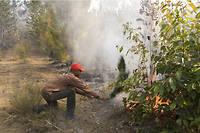 Un agent des Eaux et forêts de Madagascar s'évertue à éteindre un incendie.
