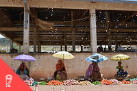 Quand l'agriculture constitue le secteur dominant de l'économie, l'effet bénéfique de la croissance sur la santé est fort, notamment sur la réduction des taux de mortalité infantile. Lorsque le secteur industriel croît, l'impact est plus faible, voire nul pour l'apport calorique. Enfin, avec l'augmentation des services, l'influence de la croissance sur l'espérance de vie diminue pour disparaître. L'effet de la croissance sur la santé est donc plus fort dans les pays les moins développés qui en sont au stade agricole.